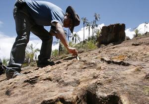 Обнаруженная гробница частично вырубленная в скальной породе