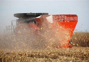 Минэкономики распределило 2,114 млн тонн квоты на экспорт зерна