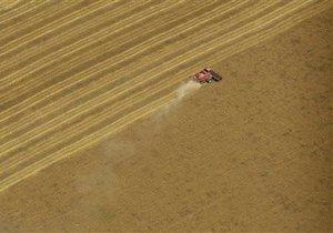 Три украинских компании получили более половины квоты на экспорт зерна