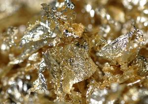 Трехлетний британец нашел клад на сумму 2,5 млн фунтов