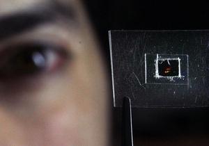 Британским ученым впервые удалось сделать предмет невидимым