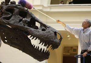 Исследование: Если бы динозавры не вымерли, млекопитающие сегодня были бы не больше мышей