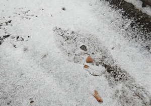Завтра в Украине ожидается снег