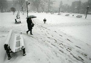 В Киевсовете призывают мэрию в следующем году посчитать все парки и газоны