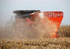 Правительство может отменить квоты на экспорт зерна в начале 2011 года