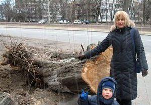В Киеве сильный ветер повалил сотни деревьев