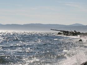 В Охотском море пропал траулер, на борту которого находятся 23 человека