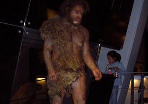 Неандертальцы могли использовать перья птиц в качестве украшений
