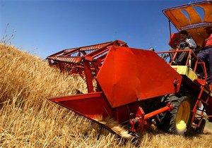 Эксперты считают, что украинские фермеры должны продавать зерно без посредников