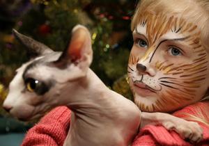 Американские ученые нашли причины того, почему у человека нет кошачьих усов