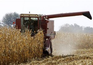 Янукович потребовал, в случае необходимости, заменить квоты на экспорт зерна таможенными ограничениями