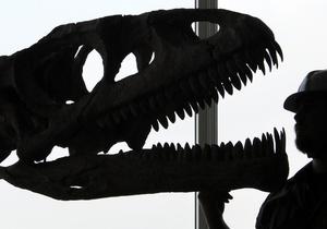В Китае обнаружили останки неизвестного сородича тираннозавра