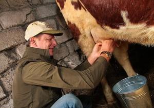Ляшко подарил семье из Кировоградской области корову Юльку