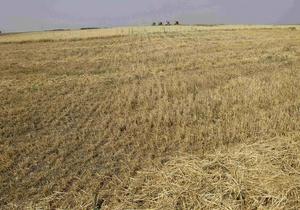 Янукович рассказал, когда в Украине будет запущен полноценный рынок земли