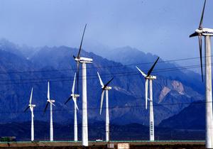 Эксперт рассказала о проблемах альтернативной энергетики в Украине