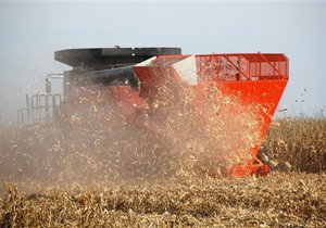 Продажа зерновых квот на аукционах: Американская Торговая Палата обратилась к Януковичу