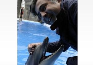 Саакашвили попытался засунуть голову в открытую пасть дельфина