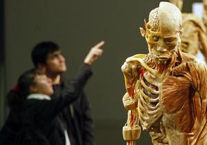 Исследование: Депрессия ослабляет кости