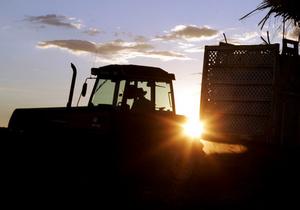 В Запорожской области взорвался трактор. Один человек погиб