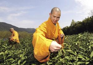 В китайских продуктах питания обнаружен опасный для здоровья канцероген
