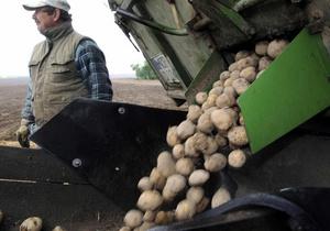 Ученые полностью расшифровали геном картофеля
