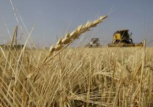 США понизили прогноз экспорта пшеницы из Украины до 7,5 млн тонн