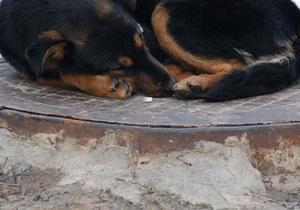 В Киеве железобетонные крышки люков заменяют резиновыми