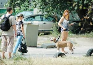 Раде предлагают ужесточить санкции для владельцев напавших на людей собак