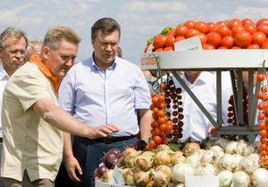 Янукович в Каховке ознакомился с выращиванием гибридов овощей