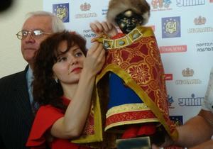 Фотогалерея: Писающий князь. В Киеве презентовали новый костюм для знаменитой брюссельской скульптуры