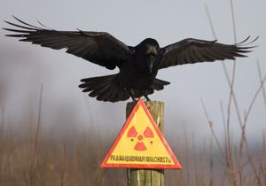 В этом году власти планируют полностью очистить от пестицидов и гербицидов 12 областей Украины