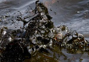 Shell пока не перекрыла до конца утечку нефти в Северное море