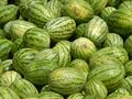 Представлено новое приложение для iPhone, которое позволяет определить спелость арбуза