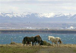 Китайский инвестор пытается купить часть Исландии