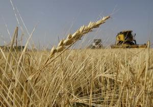 В Кабмине рассказали о качестве собранной в этом году пшеницы