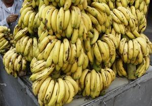 В Одесской области СБУ пресекла контрабанду более тысячи тонн бананов