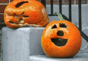 Американцы могут остаться без тыкв на Хэллоуин