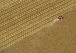 В правительстве озвучили цену всей сельскохозяйственной земли Украины