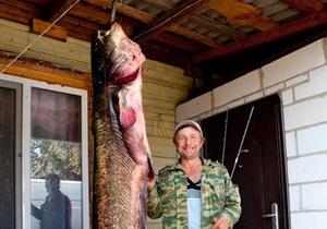 Белорусский рыбак поймал гигантского сома длиной более двух метров