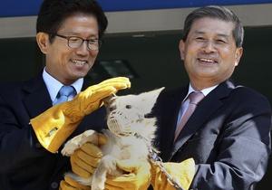 Южнокорейские ученые заявляют, что клонировали койота