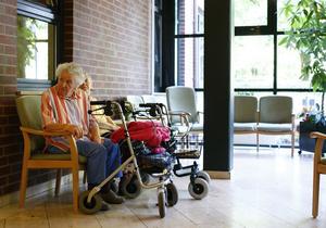 Американские исследователи заявляют о создании препарата от болезни Альцгеймера
