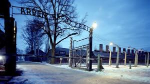 Польша заново расследует преступления Освенцима