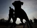 В Киеве будут жестче контролировать соблюдение правил выгула собак