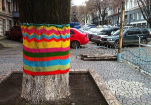 """В центре Одессы деревья укутали в """"шерстяные шарфы"""""""