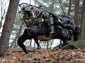 Вьючный мул: Пентагон протестировал четырехногого робота