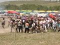 Во время скачек в Крыму лошадь врезалась в толпу людей