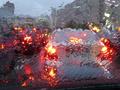 В центре Киева упавшее дерево повредило семь автомобилей