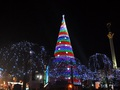 Главную елку страны зажгут в День святого Николая