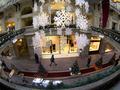 В России вооруженные инкассаторы украли искусственную елку
