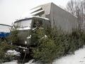 В Киеве задержали водителя, который нелегально перевозил 200 новогодних елок
